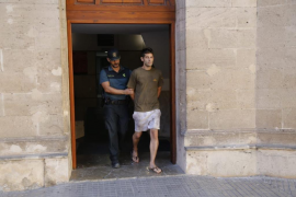 El juez envía a prisión al ladrón de chalets de Palmanyola