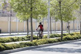 Palma acoge la reunión de la Junta Directiva de la Red de Ciudades por la Bicicleta