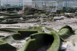 El Govern evalúa los daños en las instalaciones deportivas afectadas por la riada en Mallorca