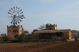 Congreso mundial en Mallorca sobre los molinos