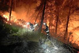 Baleares registra en 2018 la menor superficie afectada por el fuego en una década