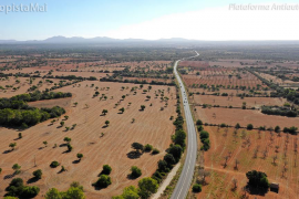 Autopista Llucmajor-Campos