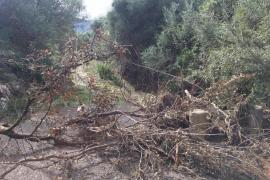 El Govern descarta que las ayudas de Sant Llorenç se extiendan a Pollença