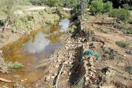 Los daños agrícolas por la riada de Llevant podrán tener ayudas de hasta un 90 %