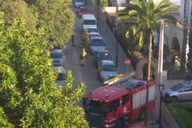 Vuelve a arder un contenedor en Palma