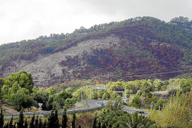 Paisaje desolador tras los incendios del verano en muchas zonas de monte