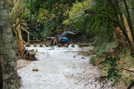 El Govern indemnizará a las fincas agrarias afectadas por las lluvias en Pollença y Alcúdia