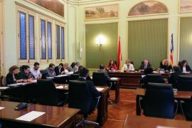 El presupuesto del IBDona en 2019 aumentará un 109%, hasta los 7,2 millones