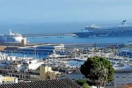 Seis cruceros en Mallorca, por primera vez en noviembre