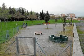 Cort habilitará dos nuevos parques de convivencia para perros en 2012