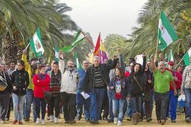 500 jornaleros entran en un cortijo de la Casa de Alba para pedir trabajo