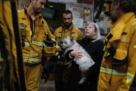 Un perro intoxicado en el incendio de una vivienda en Palma