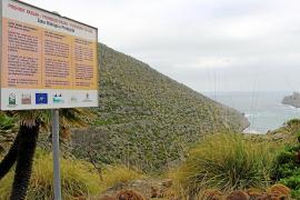 El Govern da vía libre a recuperar el acceso público a Cala Castell a través de Ternelles