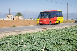 El Govern elimina cinco rutas de autobús y cambia el horario de 239 trayectos por baja rentabilidad