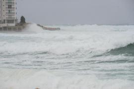 El viento provoca dificultades en el mar y el cierre del puerto de la Savina de Formentera