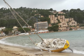 El temporal de viento causa decenas de incidentes en Mallorca