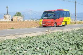 La eliminación de líneas de autobús no ocasiona problemas a los usuarios