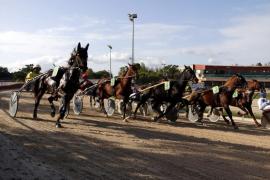 Detienen las inversiones en el Hipódromo de Manacor porque el Ayuntamiento «solo tiene el 40% de la propiedad»
