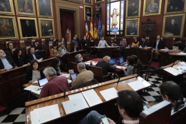 Palma aprueba el Plan estratégico de innovación