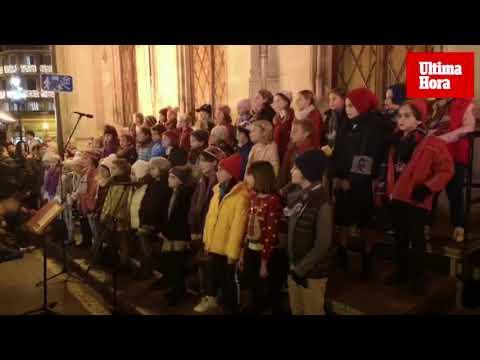 El Consell de Mallorca inaugura la iluminación navideña de su fachada