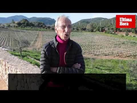 El enólogo Patrick León: «Me sorprendí mucho al conocer el precio de los vinos de Mallorca»