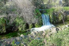 Las obras para tratar el doble de agua de las fuentes de Palma empezarán en primavera