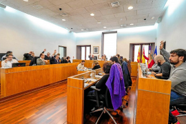 Vila aprueba gestionar con la APB 75 plazas de aparcamiento temporal en la Estación Marítima