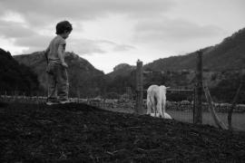 """""""Sa Serra de Tramuntana"""" un paraiso para descubruir"""