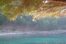 Cala Tuent, Mallorca