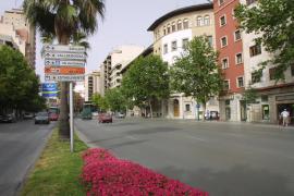Convocan una protesta el 7 de enero en Palma antes de un juicio por una violación a una menor