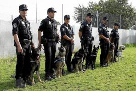 La Policía Local de Palma ultima el cierre definitivo de su Unidad Canina