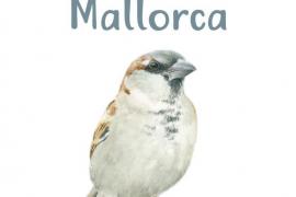 El Consell promociona el turismo ornitológico en Mallorca con una guía de aves urbanas