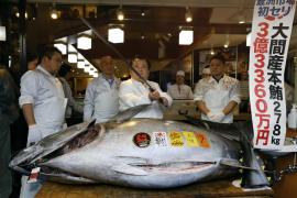 Vendido un atún por 2,7 millones de euros