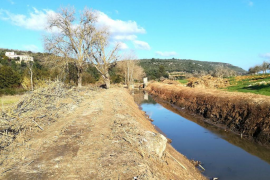 Terraferrida denuncia el «destrozo» del torrente de Na Llebrona de Manacor por las tareas de limpieza