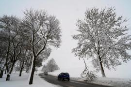 Fallece un niño aplastado por un árbol en Baviera durante las intensas nevadas