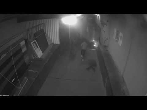 La policía difunde un vídeo de la agresión al político ultraderechista alemán