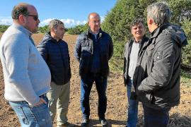 Formentera refuerza su tradición nuevos cultivos en Can Marroig