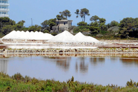 Ses Salines retoma la extracción en las segundas salinas más antiguas del mundo