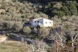 El Consell comprará el Castell d'Alaró una vez los Ordinas derriben la vivienda ilegal