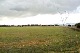 El Govern agiliza los trámites para conceder el interés general al campo de golf de Sencellles