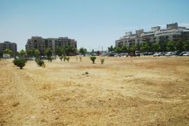 El Ajuntament de Palma limpió unos 90 solares de Palma en 2018