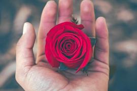 ¿Practicas la compasión?