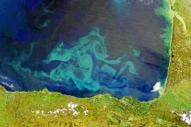 El color del mar cambiará en unos años