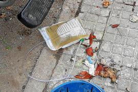 Vecinos de Son Ferriol encuentran dos sondas de orina tiradas en una calle