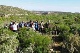 La reforestación en Benirràs por parte del CEIP Urgell, en imágenes (Fotos: Marcelo Sastre).