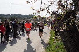 La Cursa Flor d'Ametller 2019, en imágenes (Fotos: Marcelo Sastre).