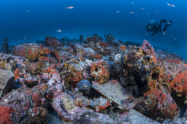 Localizan un barco de época romana en aguas de Pollença