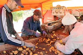 Arranca la campaña de exportación de la patata 'poblera' bajo la amenaza del 'Brexit'