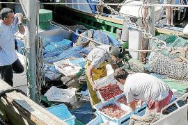 Las capturas de pescado y marisco se incrementaron un 3,5% durante 2011