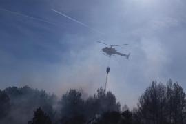 Incendio forestal en el Parc de Llevant